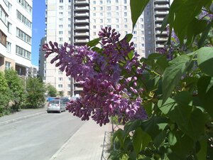 http://img-fotki.yandex.ru/get/6307/83426812.76/0_14732a_accc6401_M.jpg