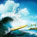 ldavi-littlefishiisland-surfboardscene.jpg