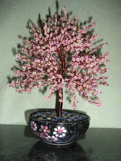 Глициния - одно из первых моих деревьев.