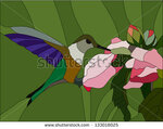 stock-vector-colibri-stained-glass-window-133018025.jpg