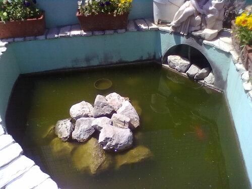 Piscina per pesciolini e tartarughe vicino al cancello for Vasca pesci giardino