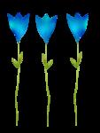 «La_magie_des_fleurs» 0_86263_4bd84a61_S