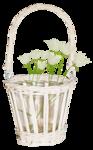 «whitebell flowers»  0_879c7_6211b67d_S