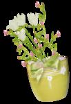 «whitebell flowers»  0_879e6_bff8c0b2_S