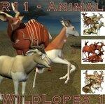 Wild Animals 1-5