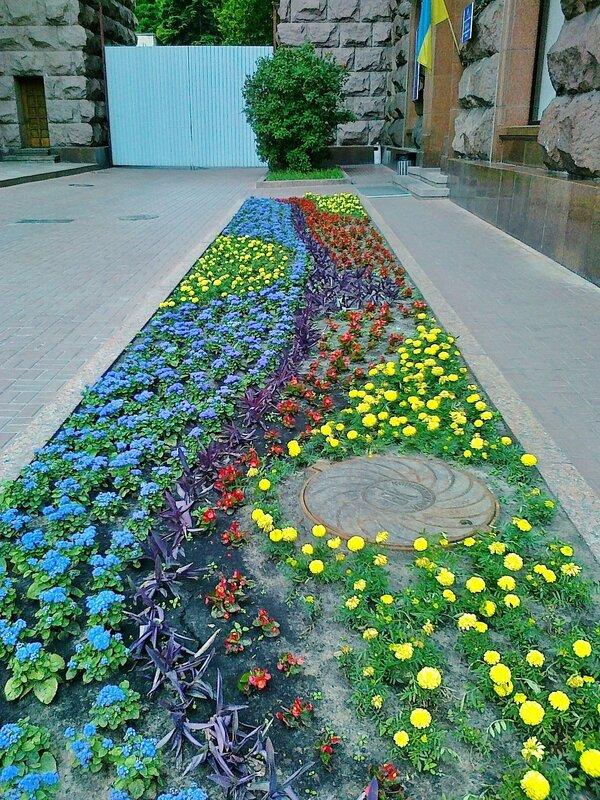 Цветы на Крещатике