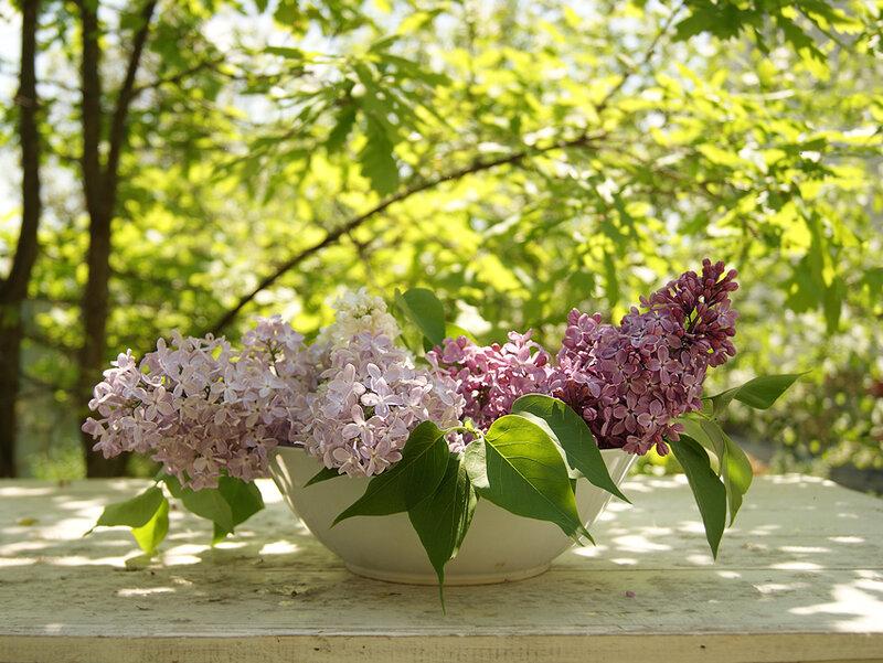 На исходе весны