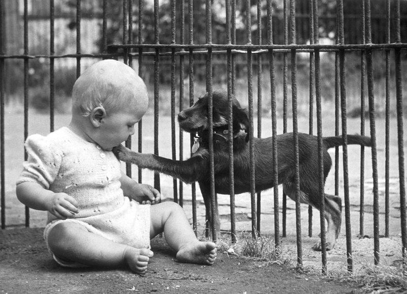 Клиника в брайтоне англия июль 1950