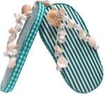 feli_syd_beach shoes2.png