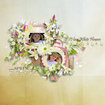 «whitebell flowers»  0_87999_cd3af741_S