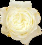 «3 скрап набора.Bee_Avarice,_Luxure,Paresse» 0_88c5d_d25e468b_S