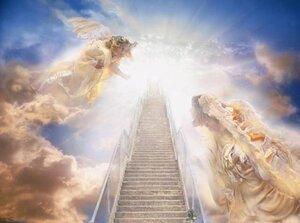 Жизнь на небесах. Правильная смерть