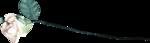 Скрап-набор «Ретро-каприз» 0_78ea3_f6da9fb7_S