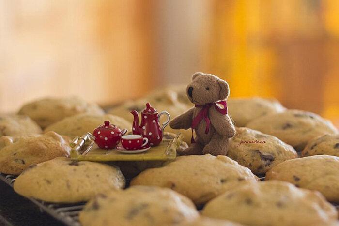 Мишка с печеньками