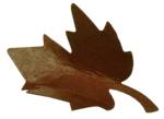 natali_autumn11_leaf9.png