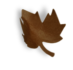 natali_autumn11_leaf10-sh.png