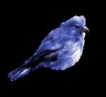 «Awakening_Mega»  0_87156_25fda9f_S