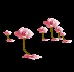 «Oh_Rose»  0_87874_5057ff8_S