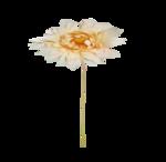 «Mystique_Designs_Flower_Bath» 0_87a19_804e44ba_S