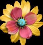 «RIVER_ROSE_5_KIT» 0_89398_7ae45e46_S