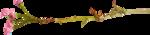 «RIVER_ROSE_5_KIT» 0_89409_cbf6dde5_S