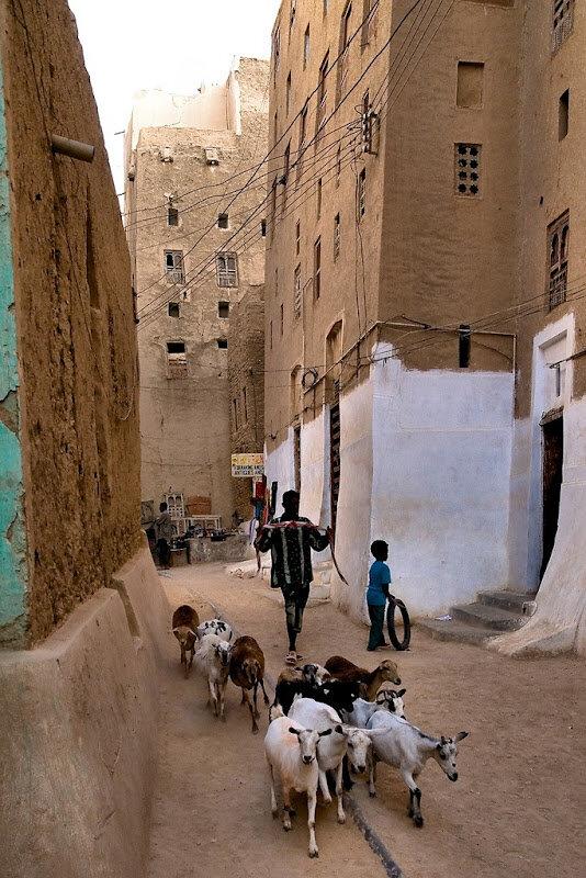 шибам йемен