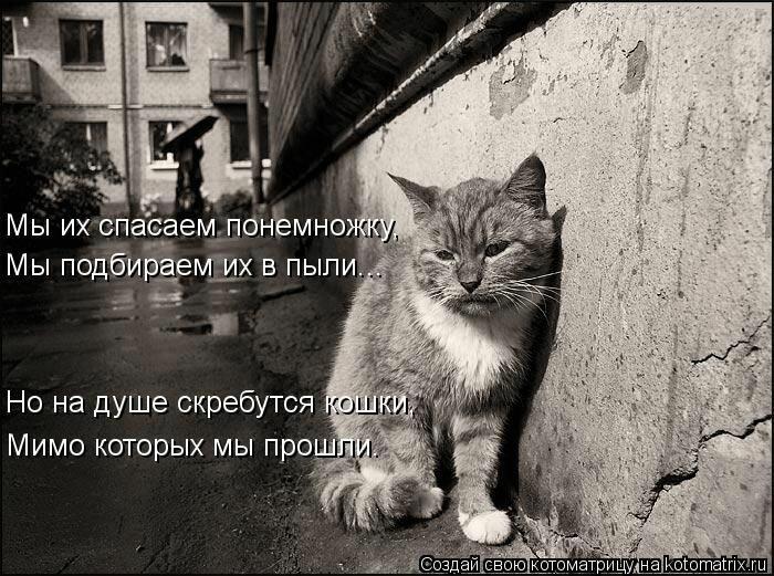 http://img-fotki.yandex.ru/get/6310/65019656.227/0_75d76_7ae2092_XL.jpg