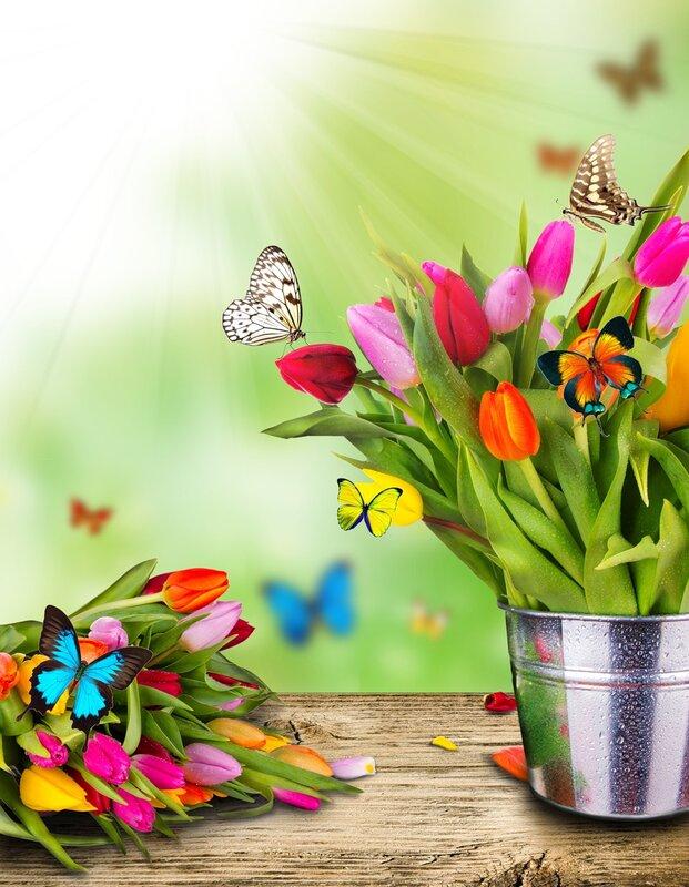 цветы и лето