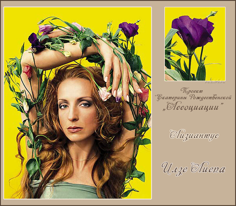 http://img-fotki.yandex.ru/get/6311/121447594.11d/0_8c951_e0d4eed9_XL.jpg