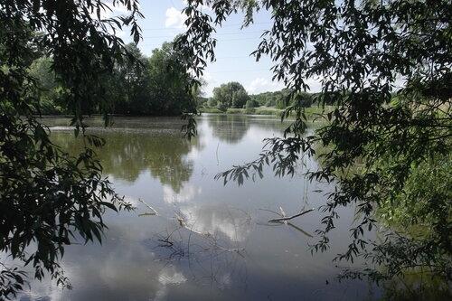 Старинный Медвежинский пруд