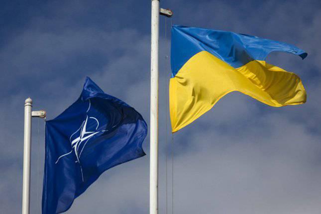Вице-президент ПА НАТО Юкнявичене предлагает маркировать российские телеканалы в Европе, - нардеп Ф