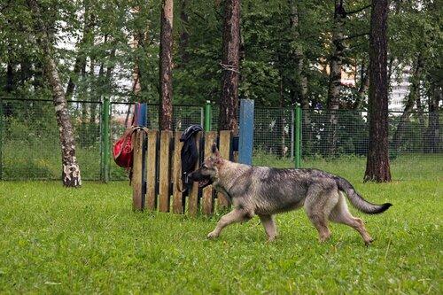 http://img-fotki.yandex.ru/get/6311/156724038.9/0_77493_89664f_L.jpg