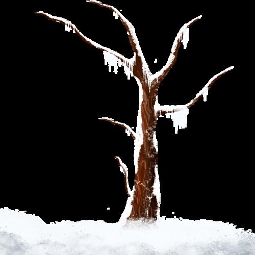 بررررد الشتاء وروعته