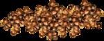 MRD_RT_coper grapes.png