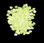 «whitebell flowers»  0_879e3_b32c960_S