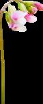 «3 скрап набора.Bee_Avarice,_Luxure,Paresse» 0_88c24_ef769d1e_S