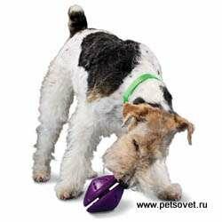 http://img-fotki.yandex.ru/get/6311/44140293.4/0_711f8_6f371e65_M.jpg
