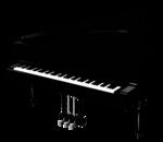 WP_GN_PIANO.png