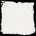 natali_design_papercut.png
