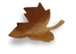 natali_autumn11_leaf11-sh1.png