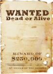 IndigoDesigns_WildWest_el (30).png