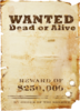 Скрап-набор Wild west 0_8fd53_235caed7_XS