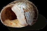 ldavi-littlefishiisland-shell9.png