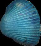 VC_SeaPrincess_El91.png
