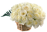 Noyemika_Valentines day (45).png