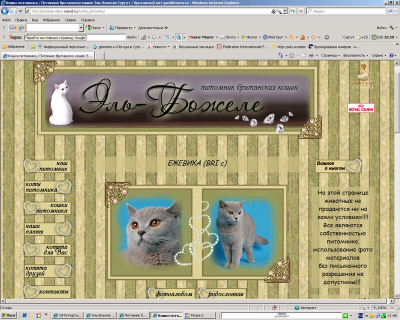 Сайты для питомников и заводчиков (Лаптева Ю.А.) 0_921d2_1da559db_XL