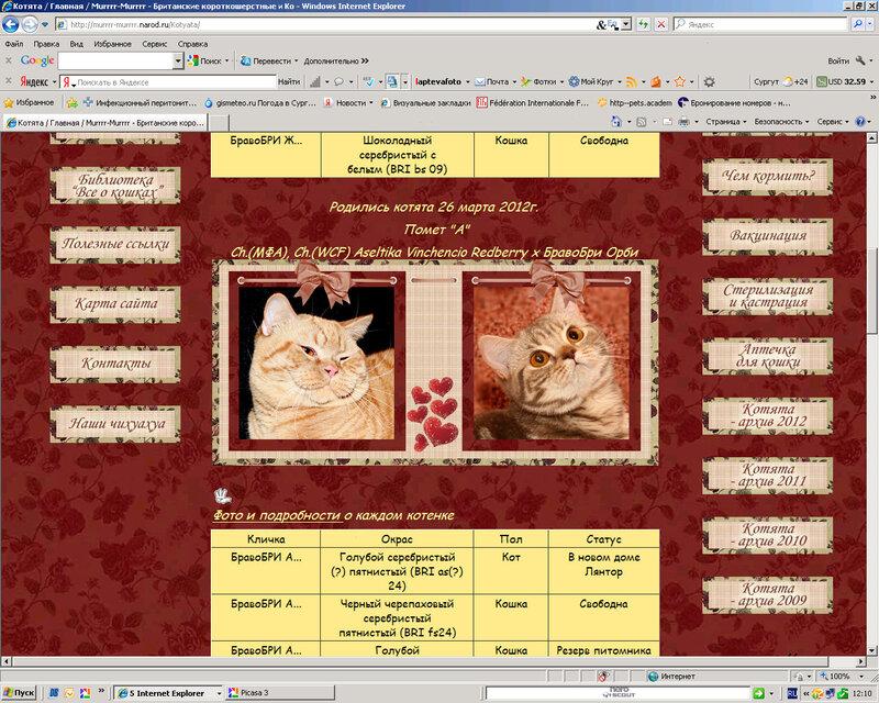 Сайты для питомников и заводчиков (Лаптева Ю.А.) 0_921d4_14bea467_XL