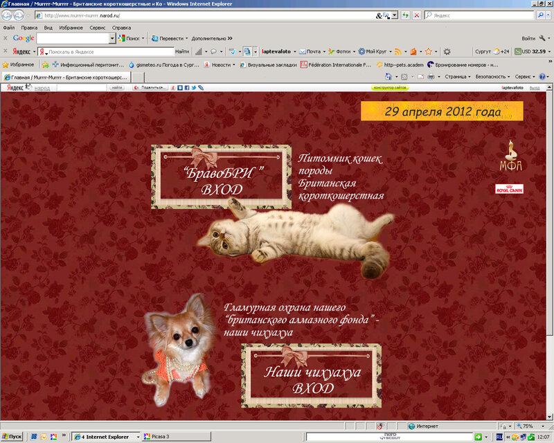 Сайты для питомников и заводчиков (Лаптева Ю.А.) 0_921d7_a30be38_XL