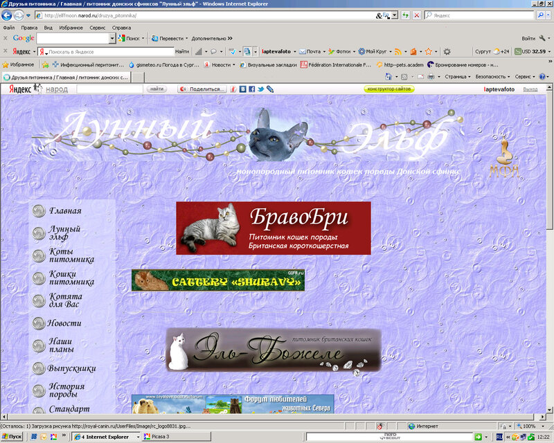 Сайты для питомников и заводчиков (Лаптева Ю.А.) 0_921db_c9ddf7c8_XL