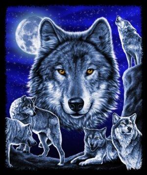 """Авторы.  Схемы вышивки.  Колеся.  Вышивка крестом.  Оригинал.  Схема вышивки  """"Волки """" ."""
